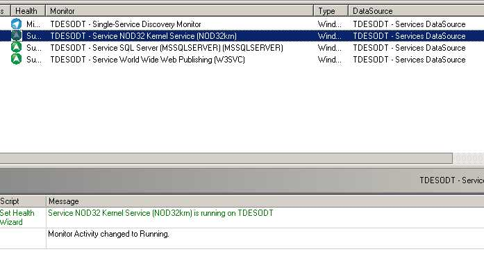 Windows Service Discovery · Customer Portal